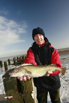 A classic spring codling