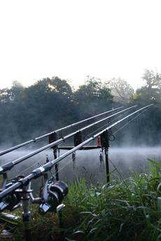 A misty dawn on Etang Meunier.