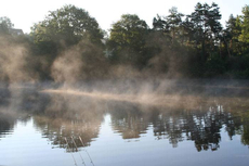 As day breaks, and the mist swirls, will the bobbin sound? The magic of angling!