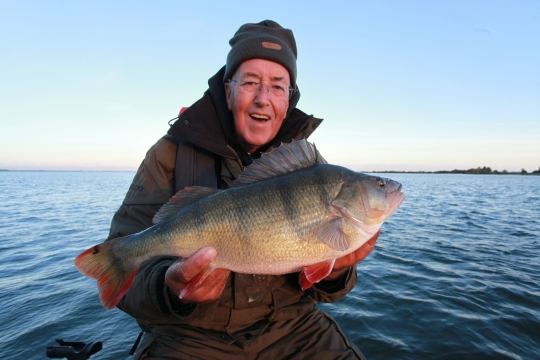 Perch Heaven | <b>Daiwa</b>sports.co.uk